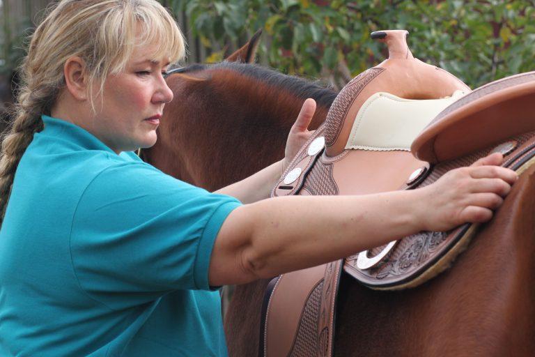 Passender Sattel- gesundes Pferd!